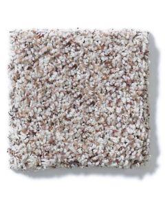 Shaw Floors - Titanium Accent: Sequoia Park Twist - Nylon Broadloom Carpet
