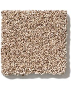 Shaw Floors - Platinum Texture: Hidden Treasure - Nylon Broadloom Carpet